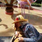 Nancy and Journey Flamingo