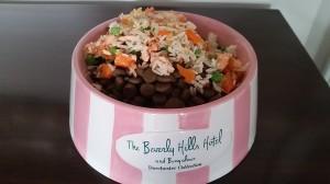 Doggie Bowl with Salmon BHH